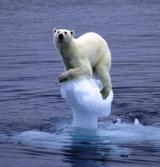 Climate Change Primer